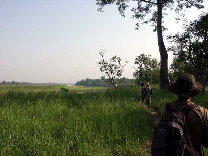 Stalking tigers on foot in Bardia National Park, Nepal, 2007