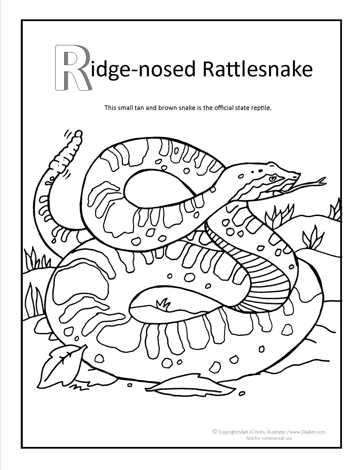 Ridge Nosed Rattlesnake Coloring Page