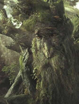 LOTR Treebeard
