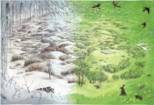Pauline Baynes Narnia - Winter to Summer