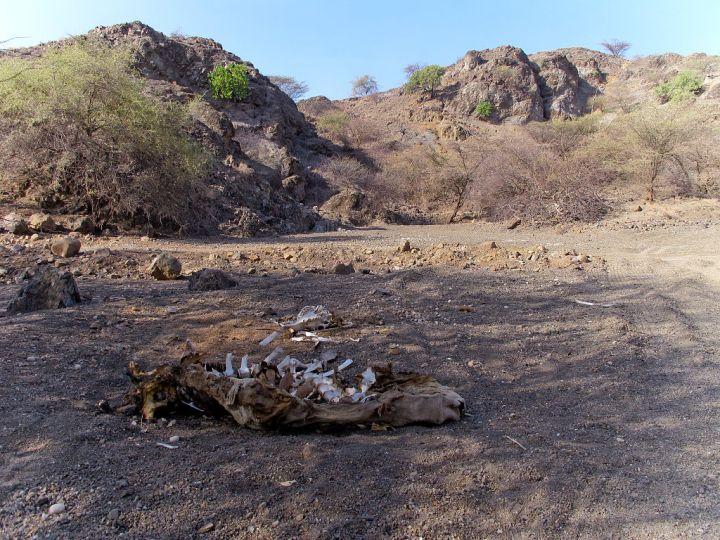 E Africa Drought ( Irina Fuhrmann/Oxfam)
