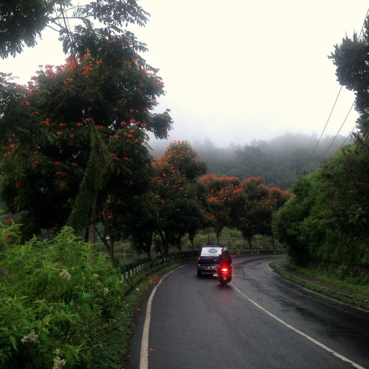 En Route Bali