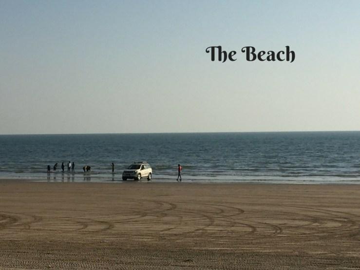 The Beach Mandvi