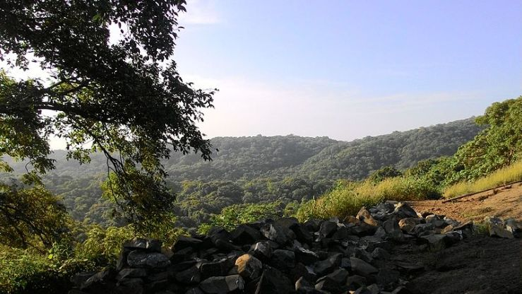 Sanjay Gandhi National Park Mark My Adventure