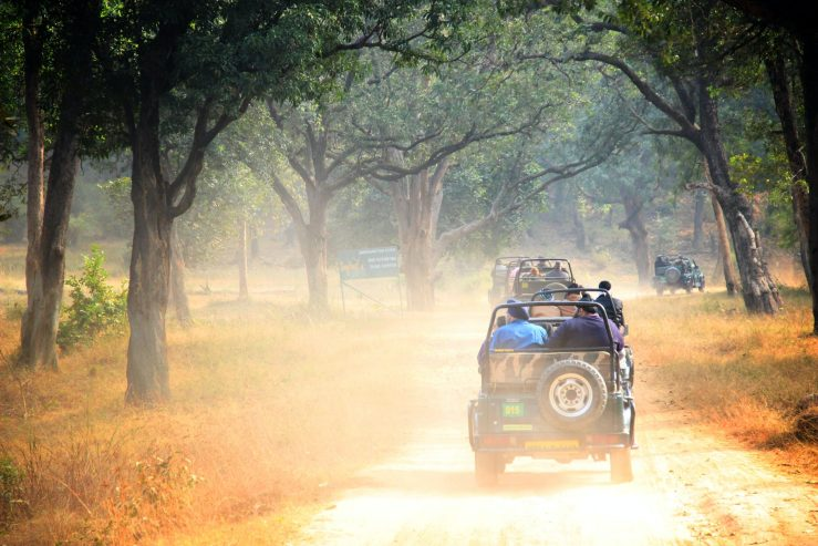 Bandhavgarh Travel