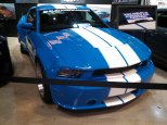 Shelby GTS for sale
