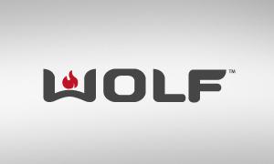 Wolf assistência técnica