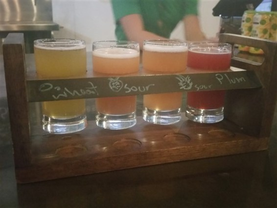 A flight of beers at 81Bay Brewing Company in Tampa, FL