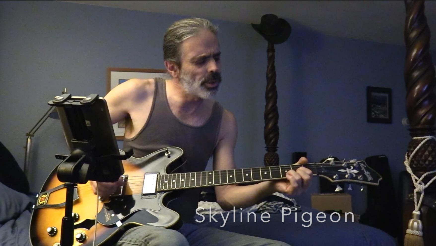 Mark Skyline Pigeon