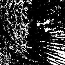 2014-06-06_12_11_41_Imagemagick-Ausgabe