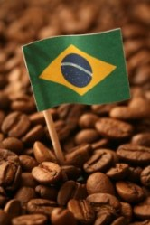 Brasiliansk Kaffe 4