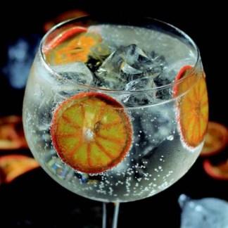 Gin og Tonic tilbehør