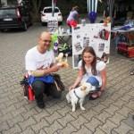 Ballonhund und Fälschung