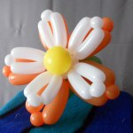 balloon-flower-orange-white