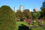 Natur pur im Boston Public Garden