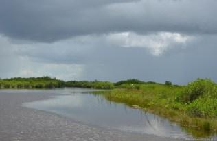 Regen über den Everglades Grasslands