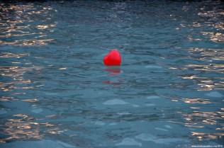 Schwimmendes Herz