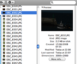 JPEG file edited with Adobe Camera Raw 4.0 and viewed in the Mac OS X Finder