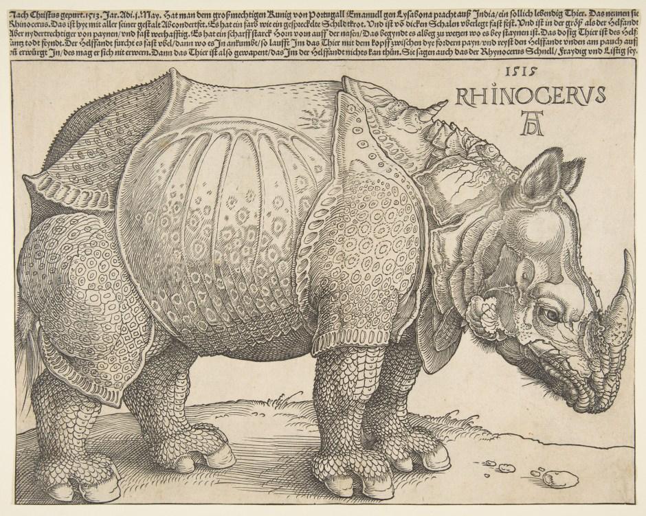 The Rhinoceros, Holzschnitt von Albrecht Dürer, The Metropolitan Museum of Art