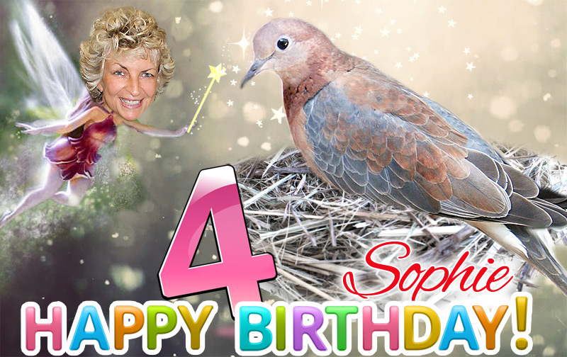_fb_sophie-4th-birthday-4-final-72dpi