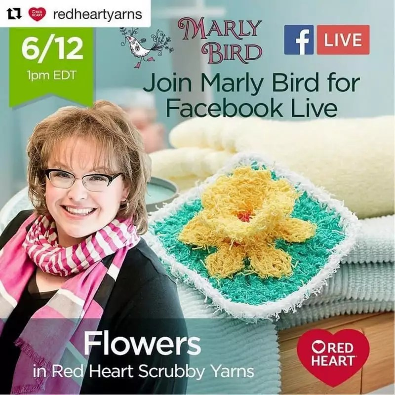 Knit and Crochet Flowers in Red Heart Scrubby Yarns-Red Heart 7 Months of Scrubby Facebook Live Video