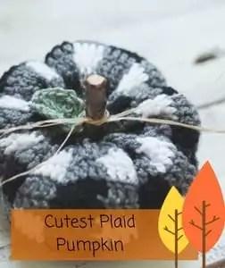 Cutest Plaid Pumpkin