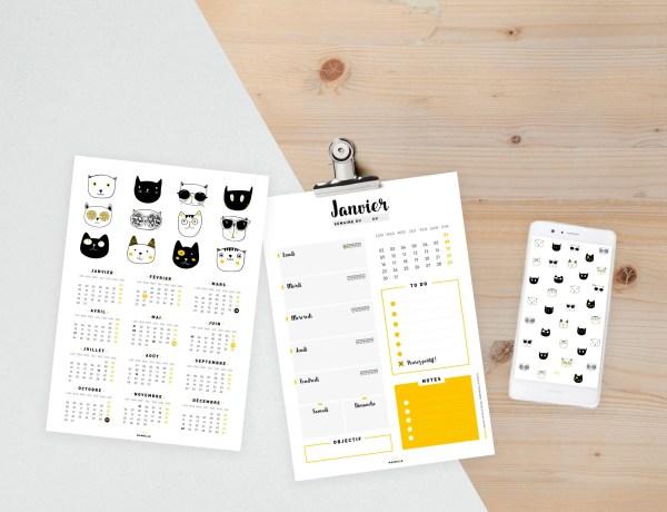couverture calendar annual cat 3 - Calendrier de janvier