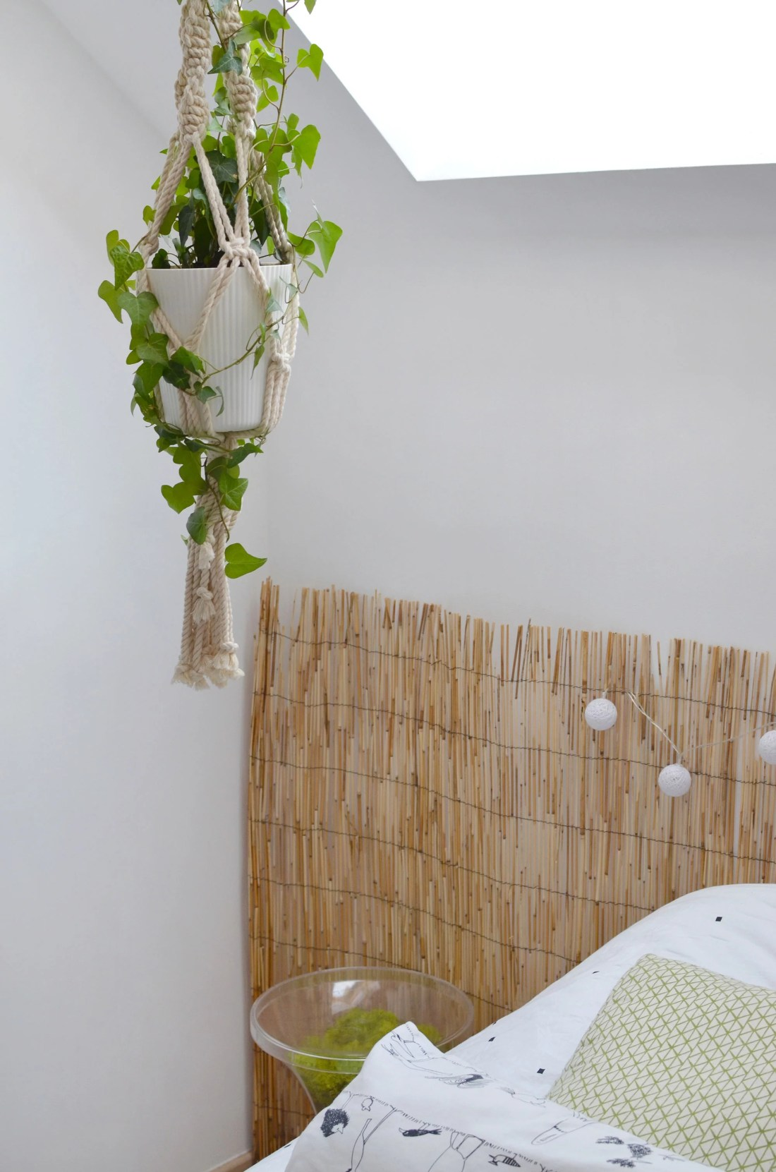 jungle-home-room-plante-macrame
