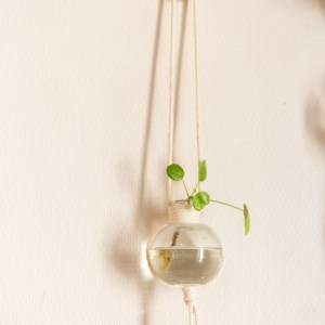 suspension bouture hellolleema etsy marmille scaled 300x300 - Mes coups de cœur Etsy #StandWithSmall