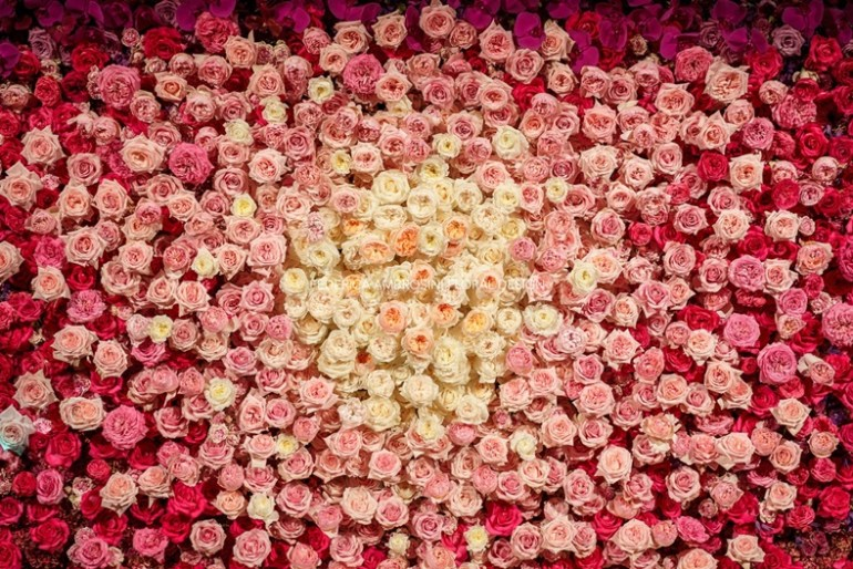 flowerwall federica ambrosini