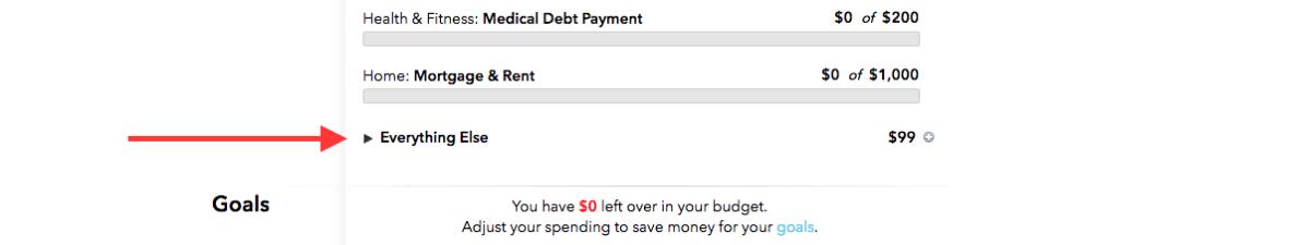 Mint Budget