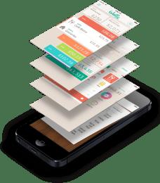Wally App Budgeting