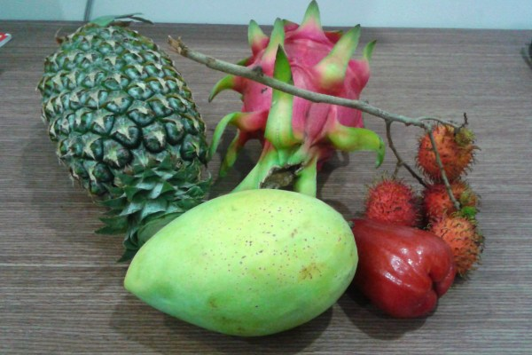 Southeast Asian Fruit Review – Fruit! While Traveling