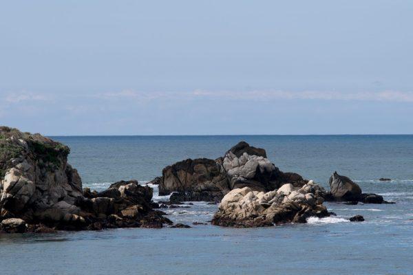 Carmel-By-The-Sea Day Trip, Point Lobos and Mission Carmel