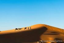 Deserto do Saara com camelos e dois homens berberes