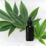 Important Tips for Buying CBD Oil