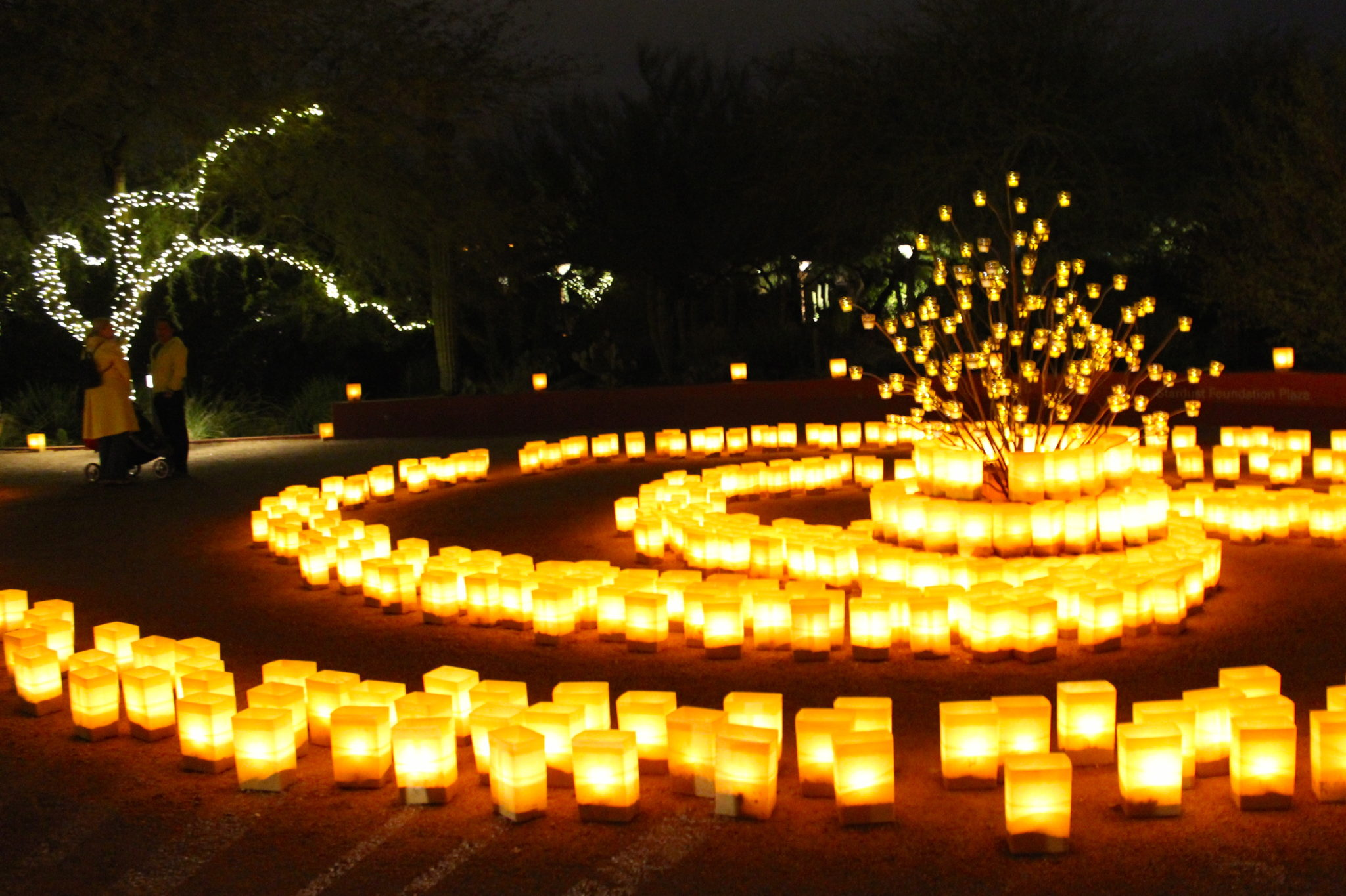 Image result for images luminarias Phoenix Botanical Garden
