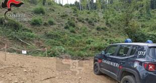 sequestro pista san fili carabinieri paola