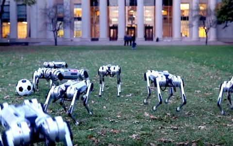 mit mini cheetah robot dogs