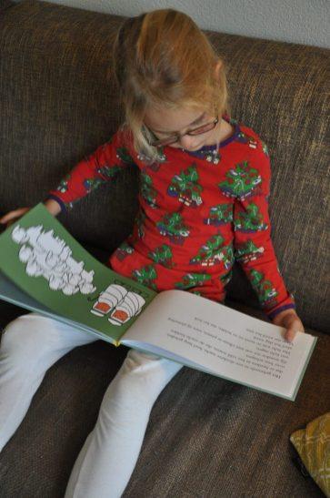 boek kerstmis dick bruna