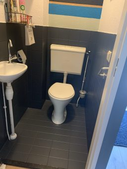 toilet mooi geverfd