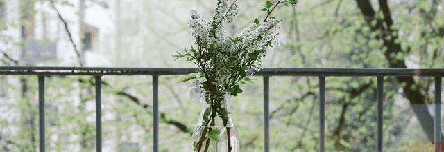 kwiaty bukiet wazon przeroczysty