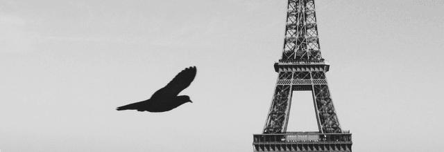 wieża eiffela paryż ajfla eifla romantyczny widok nad sekwaną