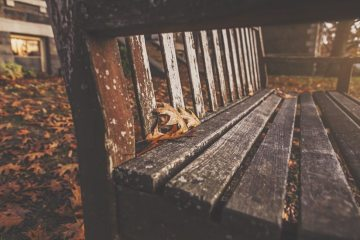 wood-bench-park-autumn-large