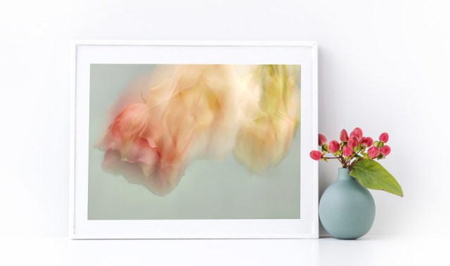 buy photography art online abstract flowers