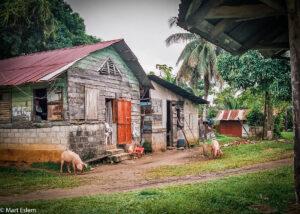 Prostá obydlí Černých Karibů, Livingstone, La Buga, Garifunas, Guatemala (Mart Eslem)