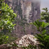 Ranní pochod džunglí k nejvyššímu vodopádu světa (Mart Eslem)