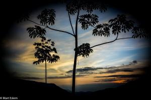 Svítání na San Vidro Trail v provincii Barinas (Mart Eslem)