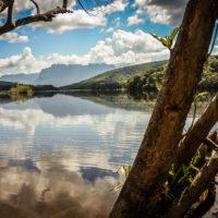 Temná hladina řeky Carrao ve Venezuele (Mart Eslem)