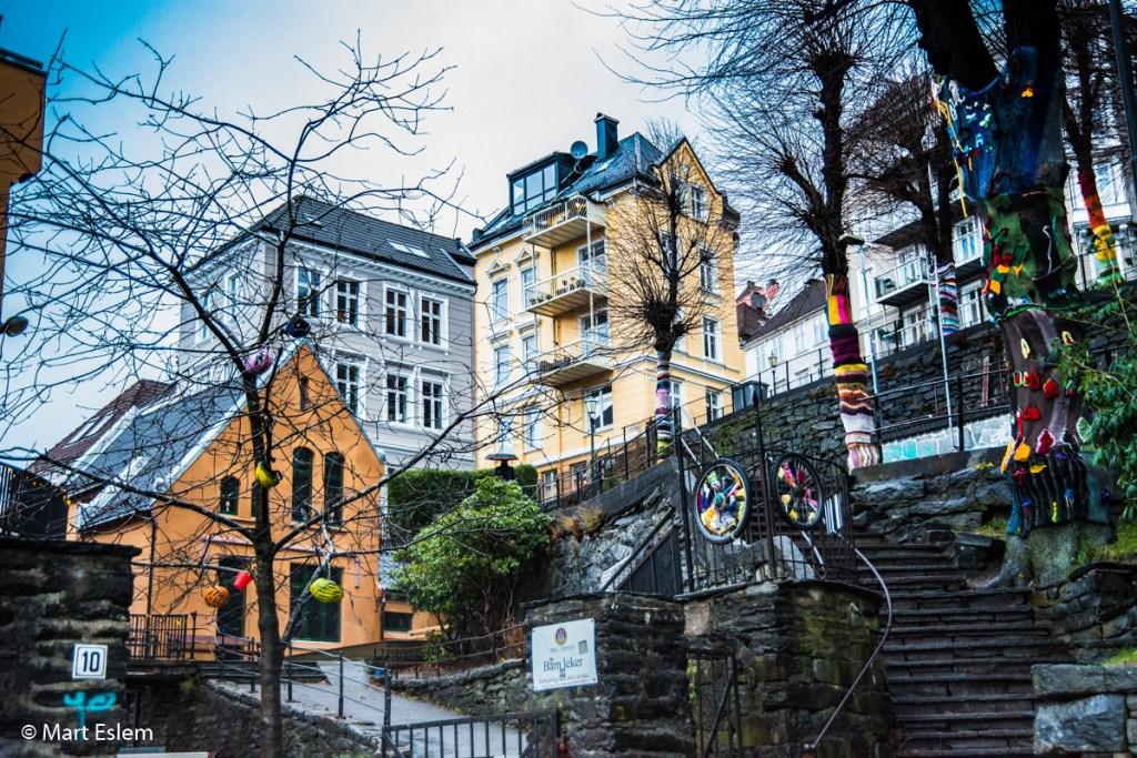 Netradiční stromová alej v Bergenu (Mart Eslem)